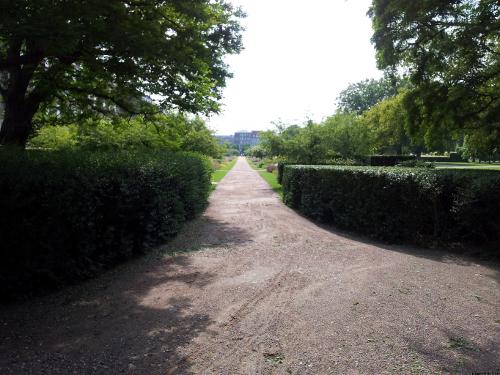 Der Weg durch den Park.