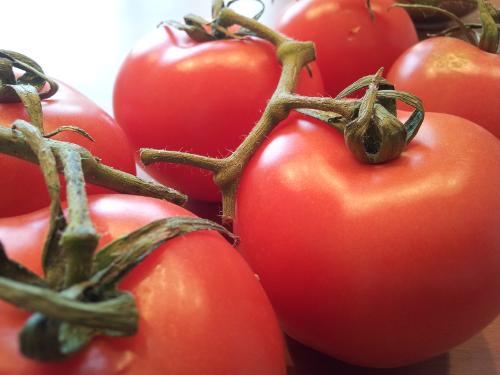 Knallrote Tomaten.