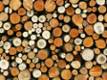 Zum Bild Holzstapel