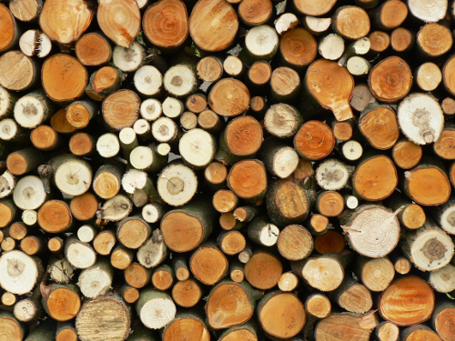 Frisches Holz gestapelt.