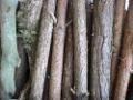 Zum Bild Holz