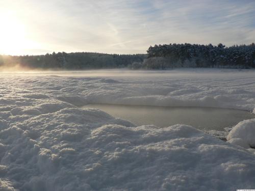 Nebel liegt über dem verschneiten Feld.